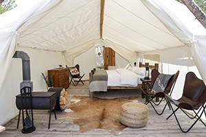 Grand Canyon Under Canvas :: Luxury camping on 56 secluded acres of beautiful forest along historic Route 66 at The Gateway to the Grand Canyon! Choose from one of our 3 gorgeous luxury tent types.